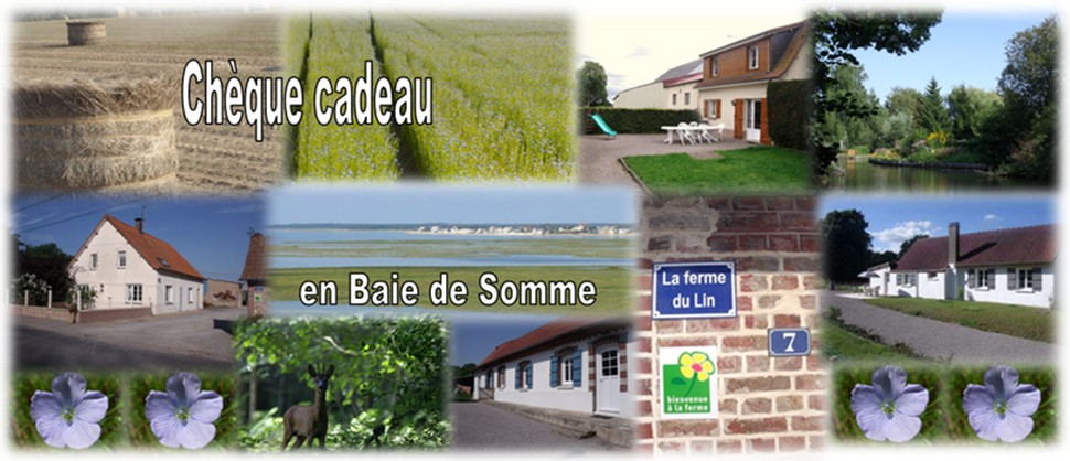novembre octobre grand gite de groupe baie de somme week end campagne